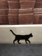 Peat the cat <3
