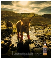 Tomatin-Whisky-Campaign