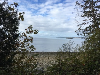 Willingdon Beach